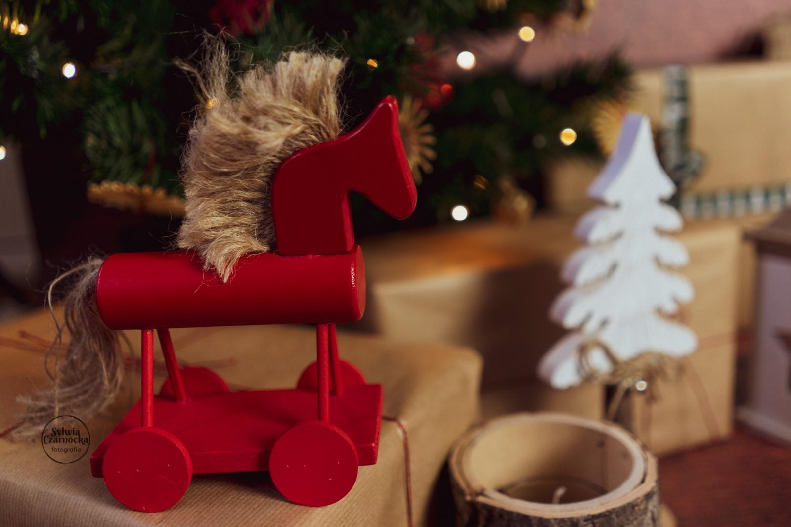 świąteczne mini sesje 2019